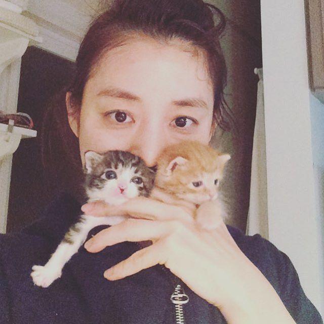 石田ゆり子と猫の画像