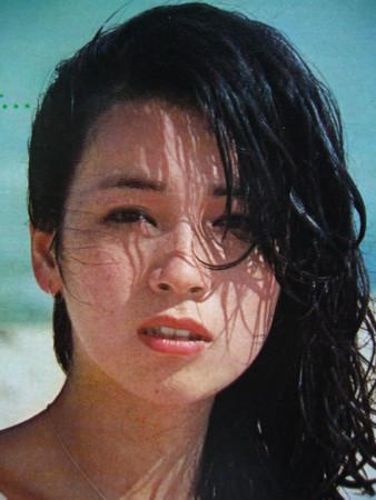 藤真利子の若い頃の画像