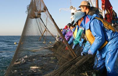 漁師の画像